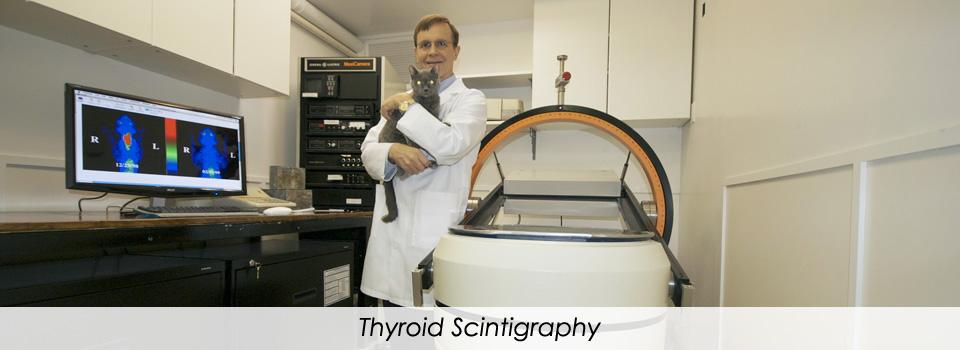 ThyroidScintigraphy2